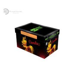 Blackboxx Camelia